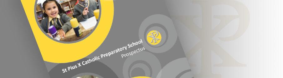 Prospectus graphic